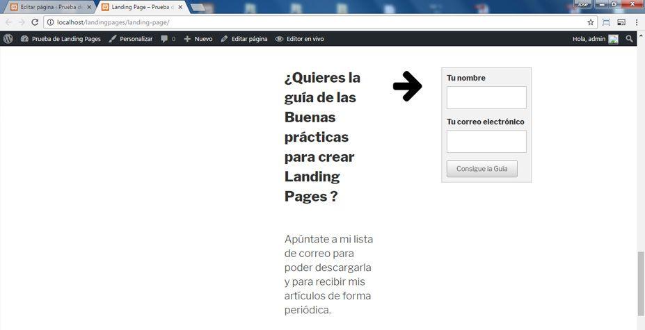 Vista previa de la Landing Page en el navegador