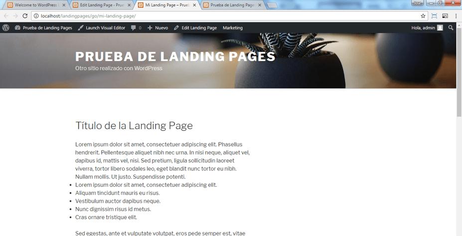 Vista previa en el navegador de nuestra Landing Page en WordPress