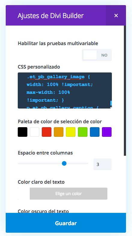 Pegar el código CSS en los ajustes de la Galería