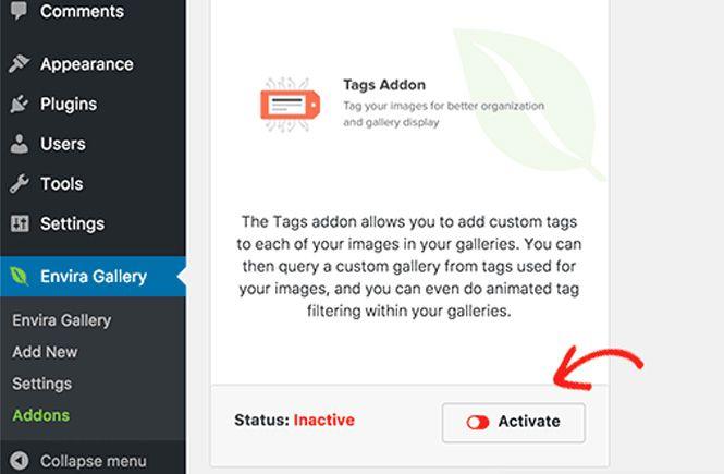Activar el Addon para crear un portafolio filtrable en wordpress