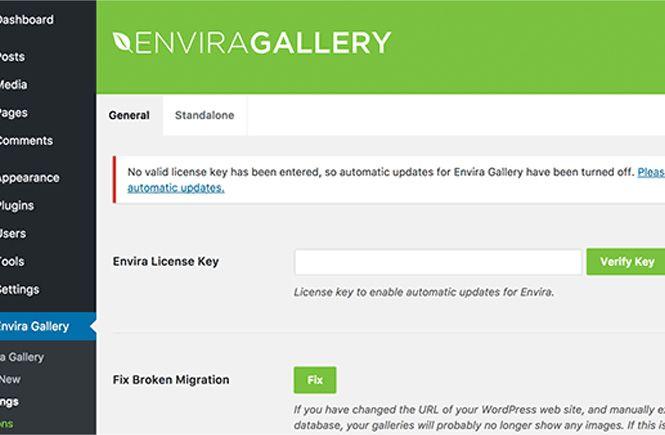 Introducir licencia en Envira Gallery