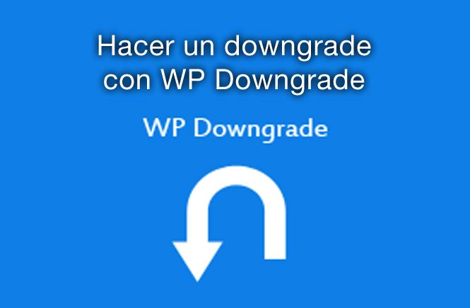 Hacer un downgrade con wp downgrade