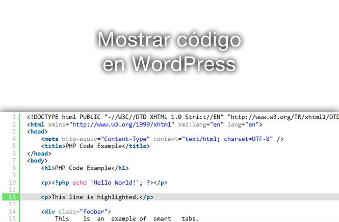 Mostrar código en WordPress