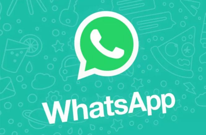 Conectar WordPress y WhatsApp