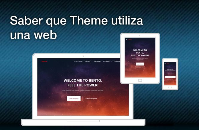 Saber el Theme de WordPress