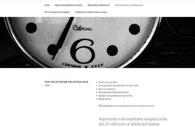 Crear contenido de prueba con FakerPress - Páginas